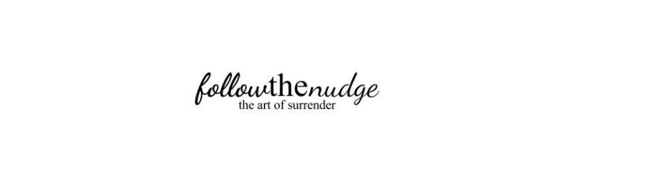 cropped-follow-the-nudge-logo.jpg